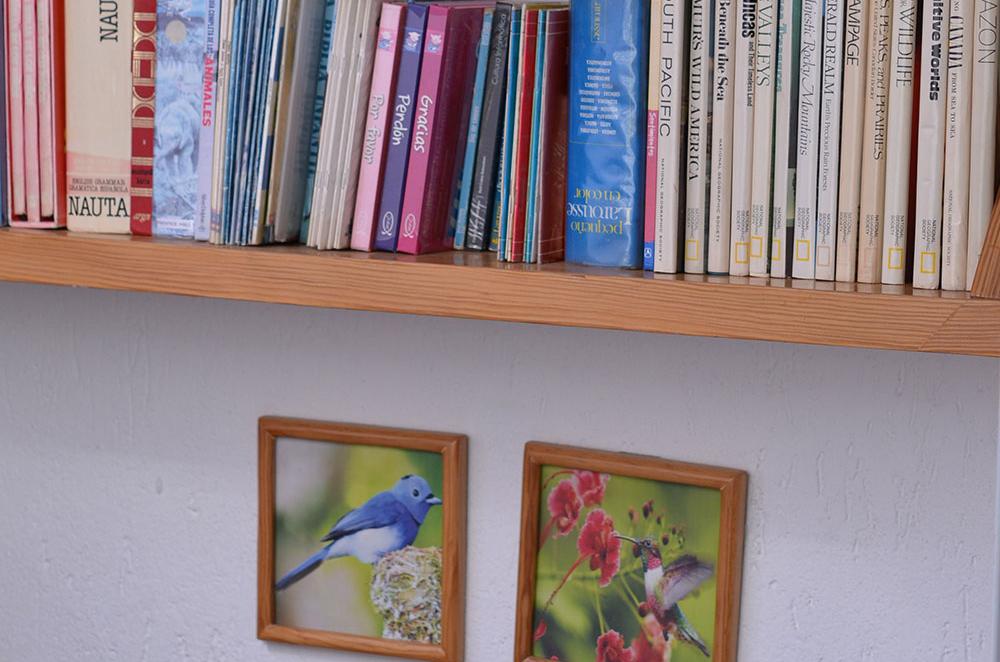 Libros-para-enriquecimiento-de-Cultura
